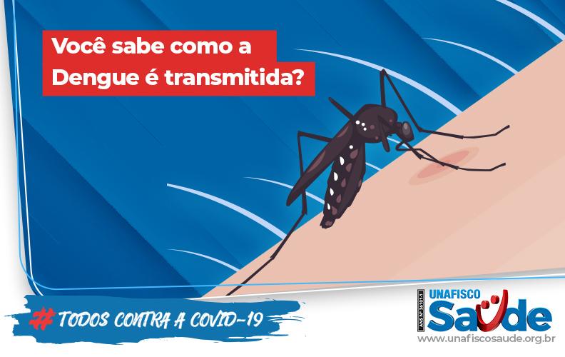 transmição dengue_792x500