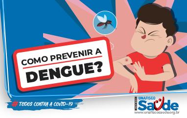 Como previnir a dengue_382x241